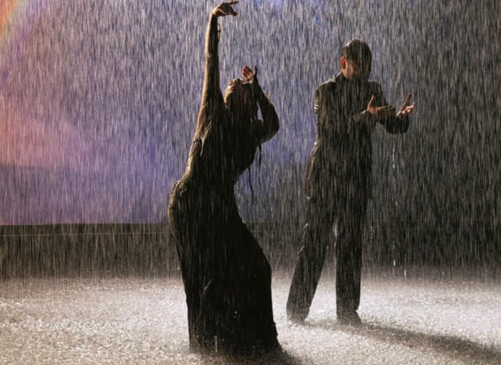 Flamenco, flamenco, 2010