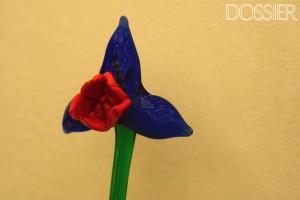 DSC_0041 copia